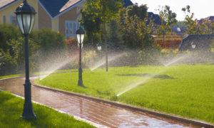 полив загородного участка