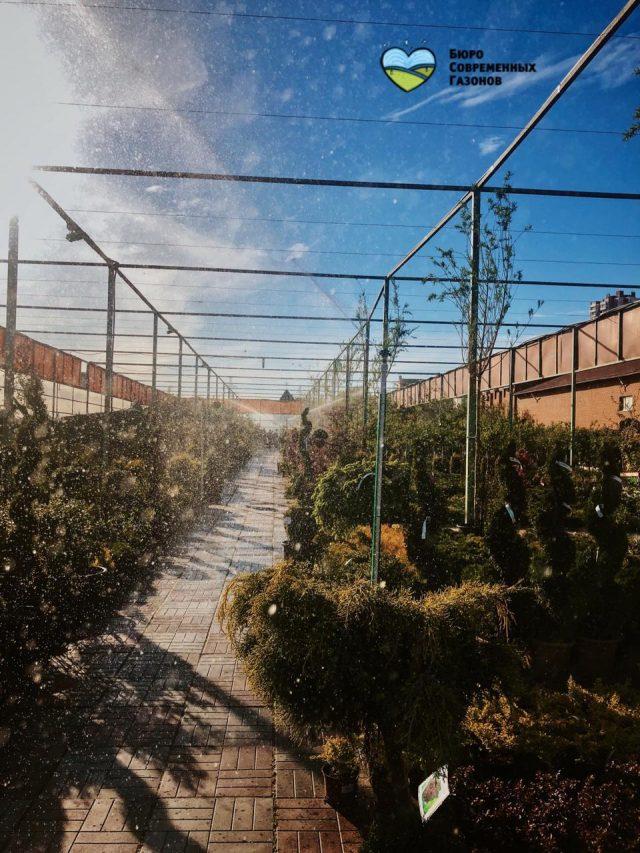 Садовый Центр «Ясенево»